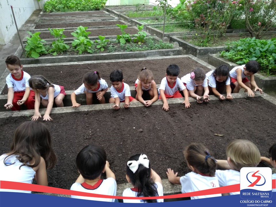 Infantil III realiza atividade do Projeto de Leitura na horta do Colégio